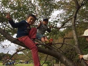 【終了しました】秘密基地キャンプ @ 西宮市立甲山自然の家